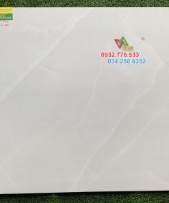 Gạch Lát Nền 80×80 Viglacera 8858
