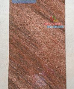 Gạch lát nền granite đồng chất Trung quốc DC481