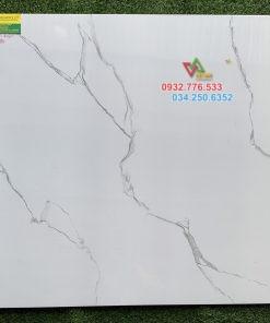 Gạch lát nền Viglacera 80×80 cm giá rẻ nhất Hồ Chí Minh
