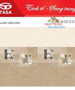Gạch Ốp Tường Men Bóng 30X60 Tasa Satino