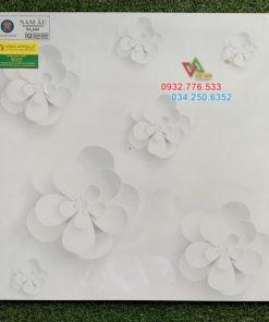 60×60 gạch lát nền 3D NA_6161