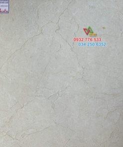 Gạch lát nền 60×60 đá granite 6006