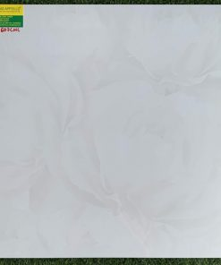 Gạch lát nền 60×60 đá bóng kiếng toàn phần hàng chất lượng 607