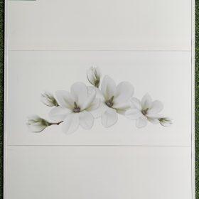 bộ gạch 30x60 màu trắng họa tiết cánh hoa đẹp