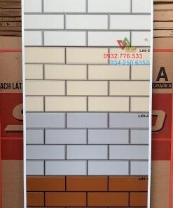 Gạch 25×50 ốp lát trang trí