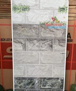 Gạch ốp tường trang trí 25×50
